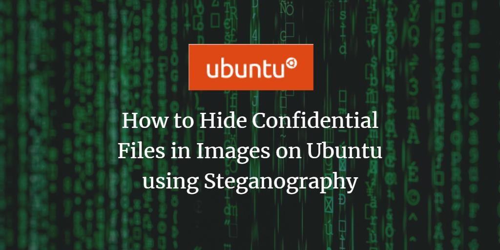 hide files inside pic image steganography